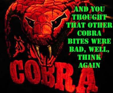 Info CobraSig