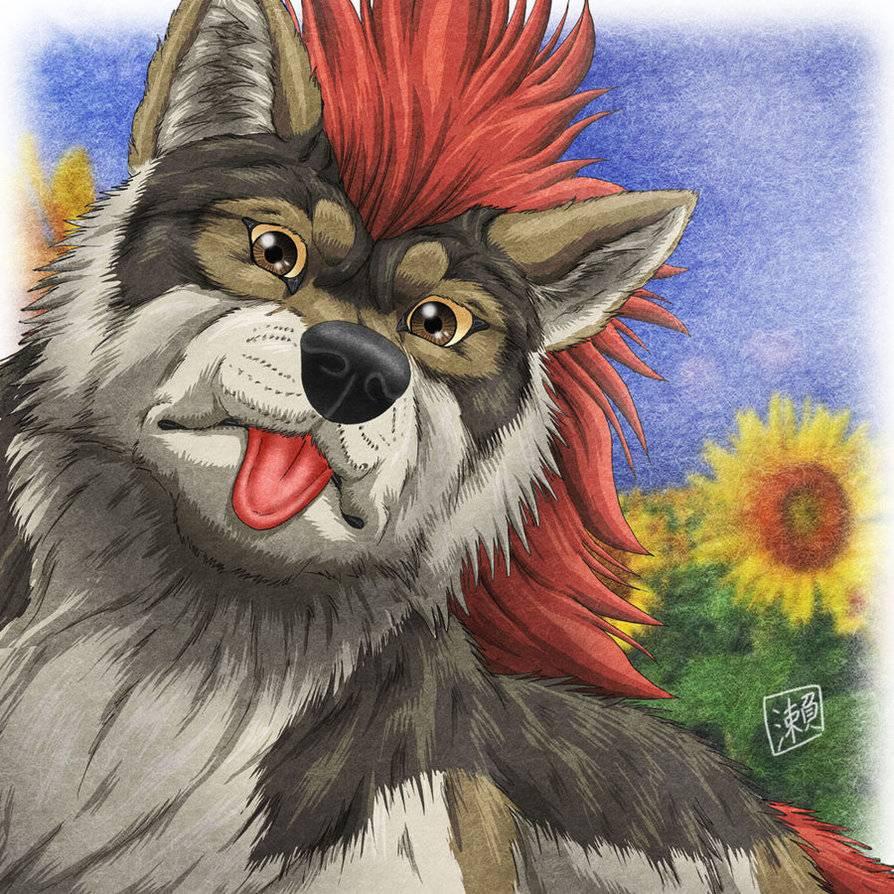 Cayden. Wolf__Sunflower_by_derSheltie_zps10809046