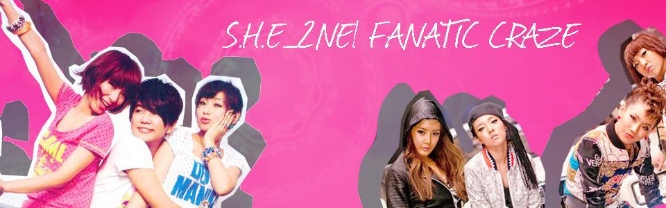 S.H.E_2NE1 Fanatic Craze