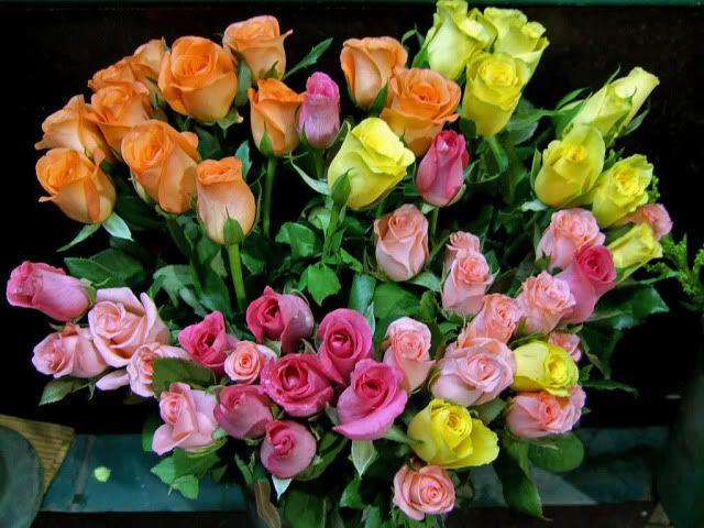 60. Gönülçelen -Inima furata - Heart Stealer - General Discussions - Comentarii - Pagina 21 Flowers-2