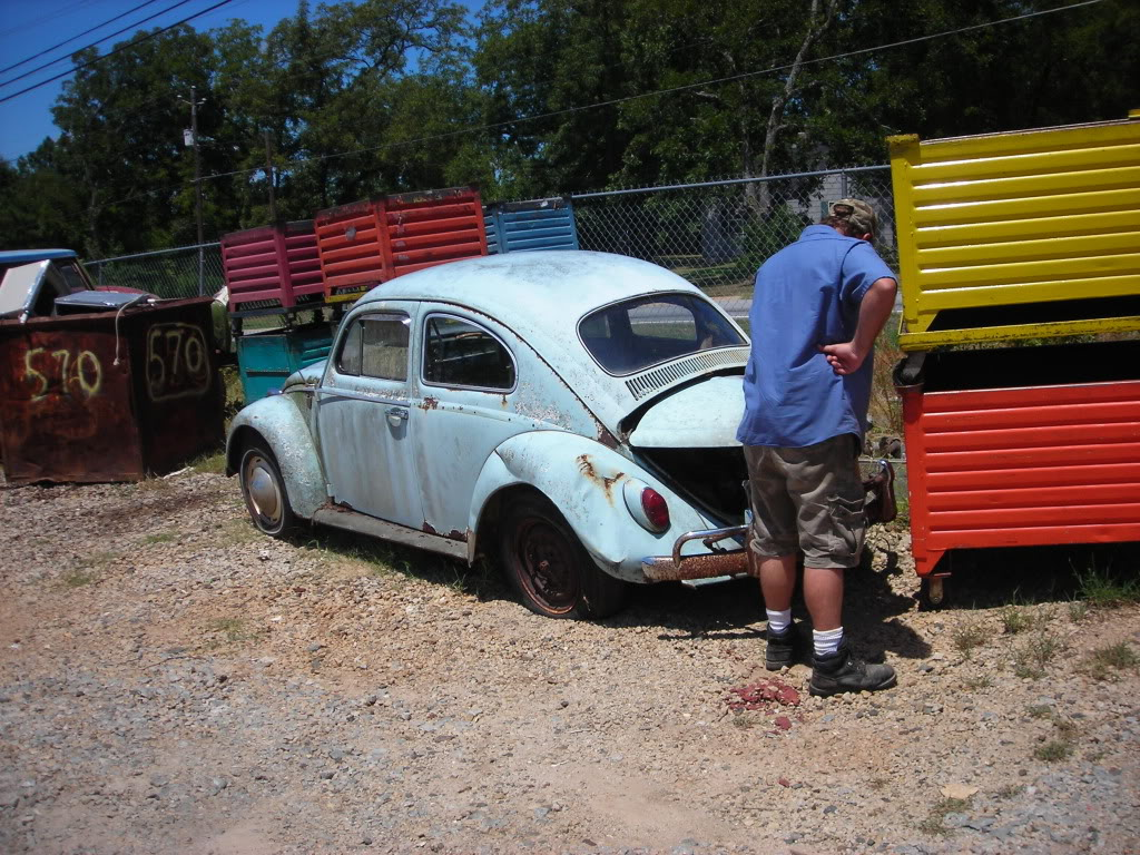 What did you do to your volkswagen today? 64beetle1