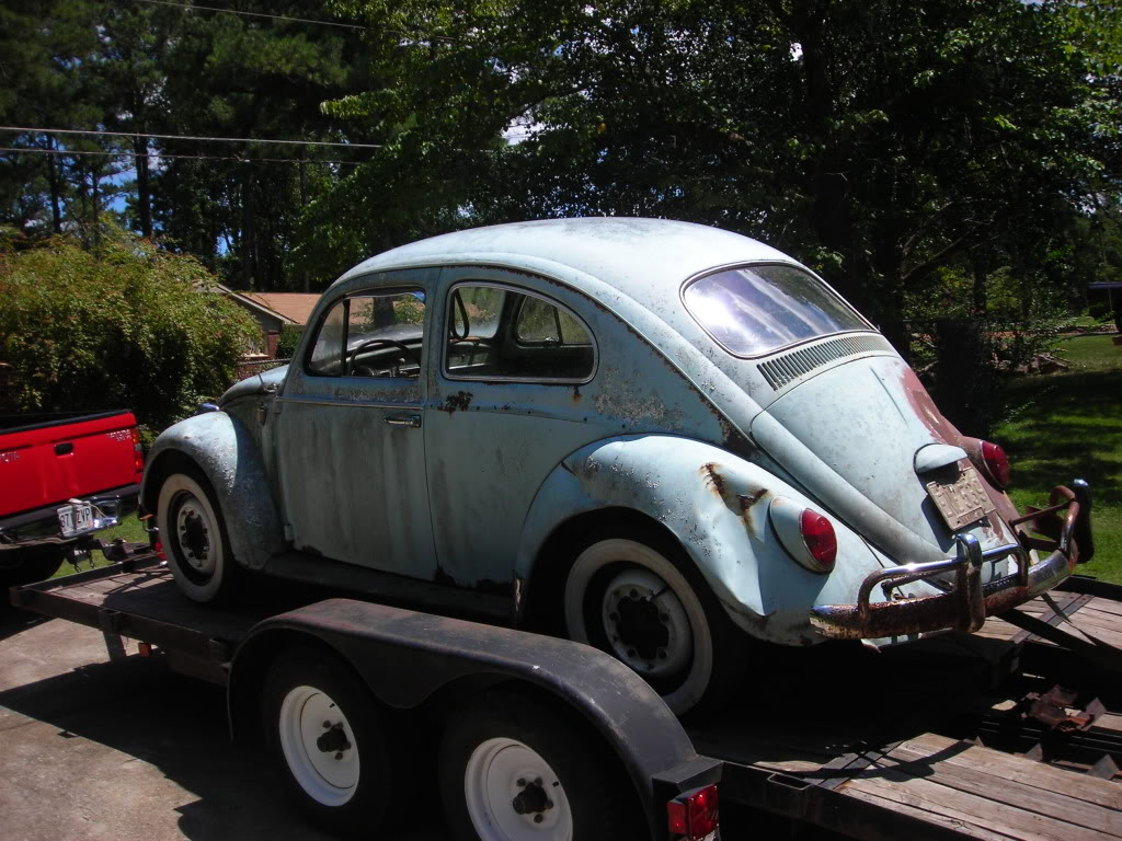What did you do to your volkswagen today? 64beetle12