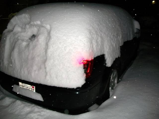 Lovely Winter.....lol 054
