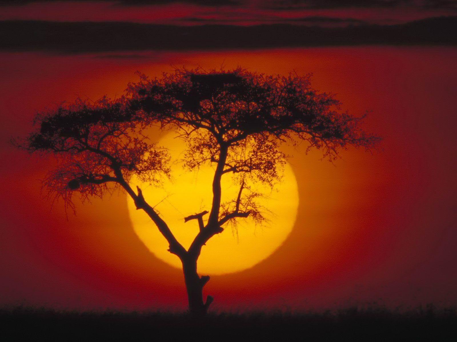 afrika..... 873990684