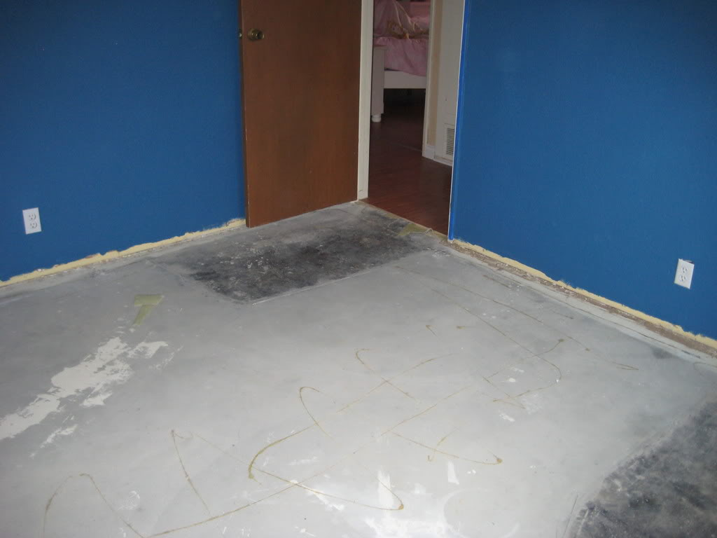 Paint & Laminate Flooring IMG_0575