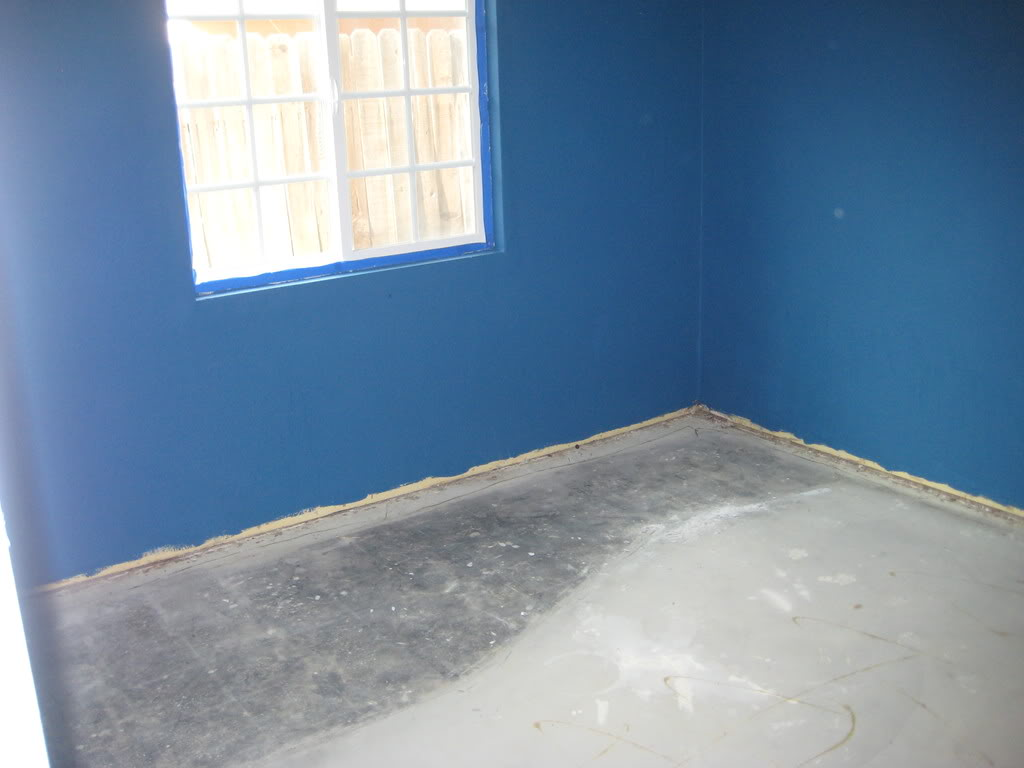 Paint & Laminate Flooring IMG_0578