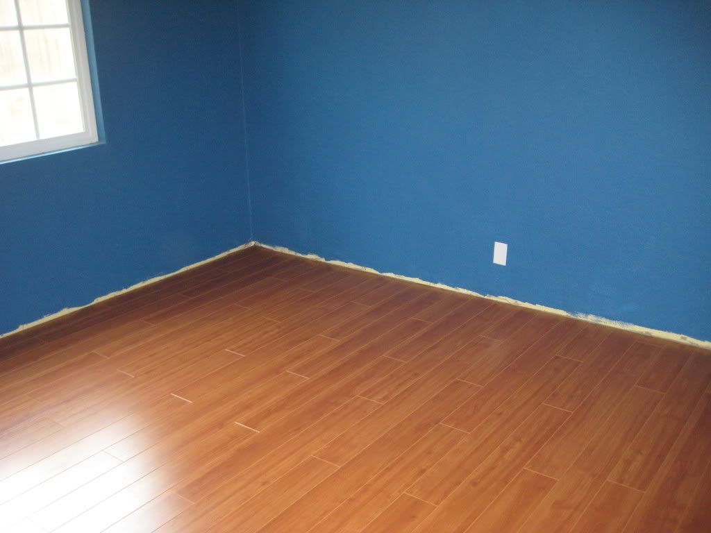 Paint & Laminate Flooring IMG_0579