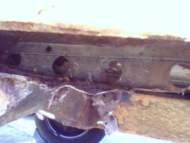 Beetlebums Panel Phonepics063