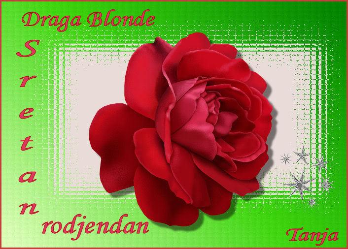 Draga Blonde BG Cestitkablonde-1