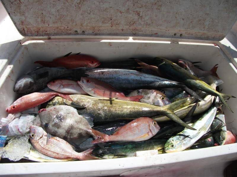 Wrightsville Beach----Found the Fish!!! DSCF1062