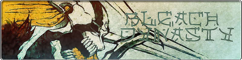 Bleach Dynasty Banner