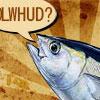 LOLwhud Tunafish