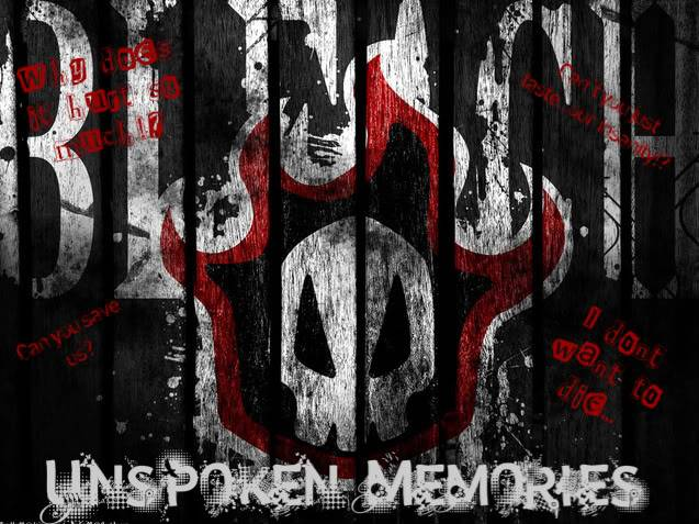 Bleach : Unspoken Memories  Skull