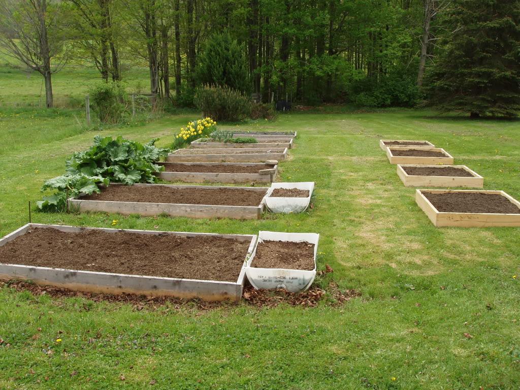Northeast PA Sq. Ft. Gardener here! P1010423