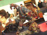 Salon AFM Montrouge 2012  Th_DSC01064