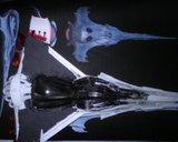 Vaisseau Wraith : le Dart Th_DSC05266