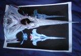 Vaisseau Wraith : le Dart Th_DSC05503