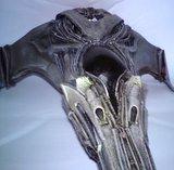 Vaisseau Wraith : le Dart Th_DSC05539