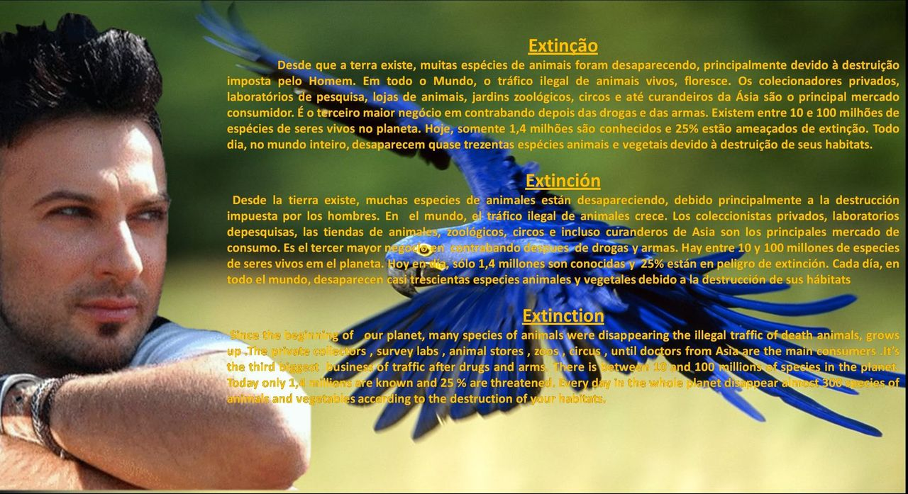 MOTHER EARTH PROJECT BANNERS ProjetoTerraMe-extino_