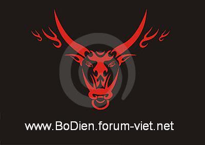 Bò's forum