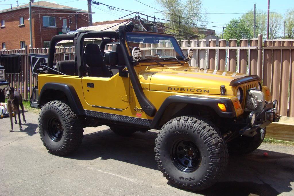 jeep rubicon 2003 or inca replique DSC01509