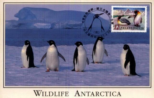 Pinguine TWN_20060325_05a