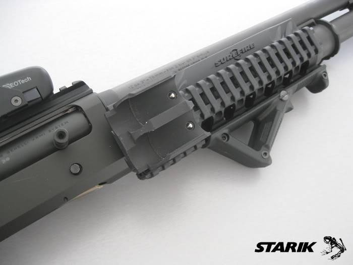 Benelli M4 Entry - Page 3 RIMG_3420