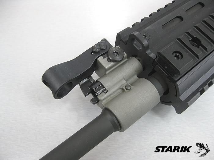 Le FN SCAR®-L STD RIMG_4112