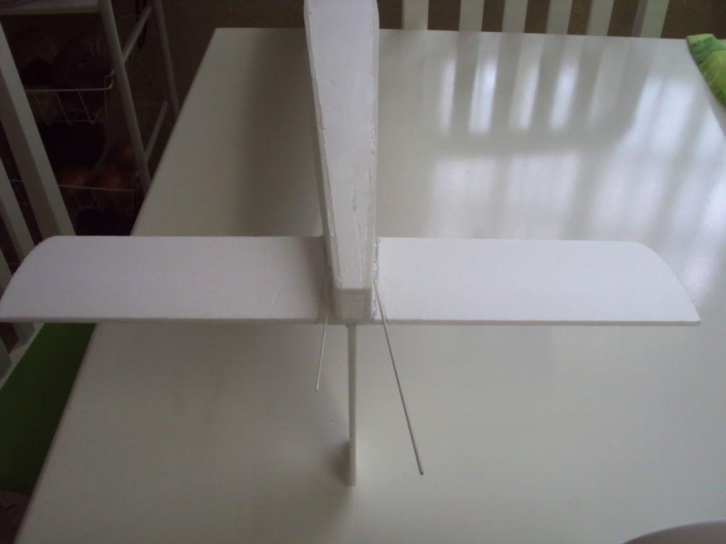 montagem do telemaster DSC02059
