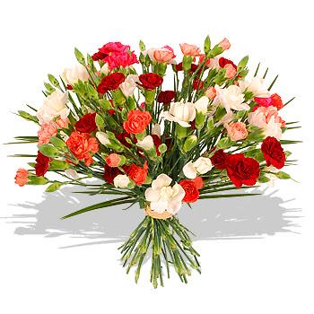 Yam Koj Ntshaw Tshaj 1695-mixed_carnations