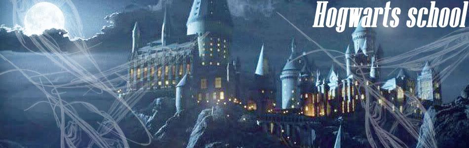 ~Hogwarts school~