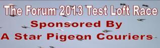Test Loft 2013