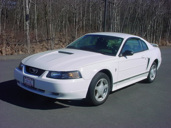 Some pics for showin! (first thread, wewt) Mustang