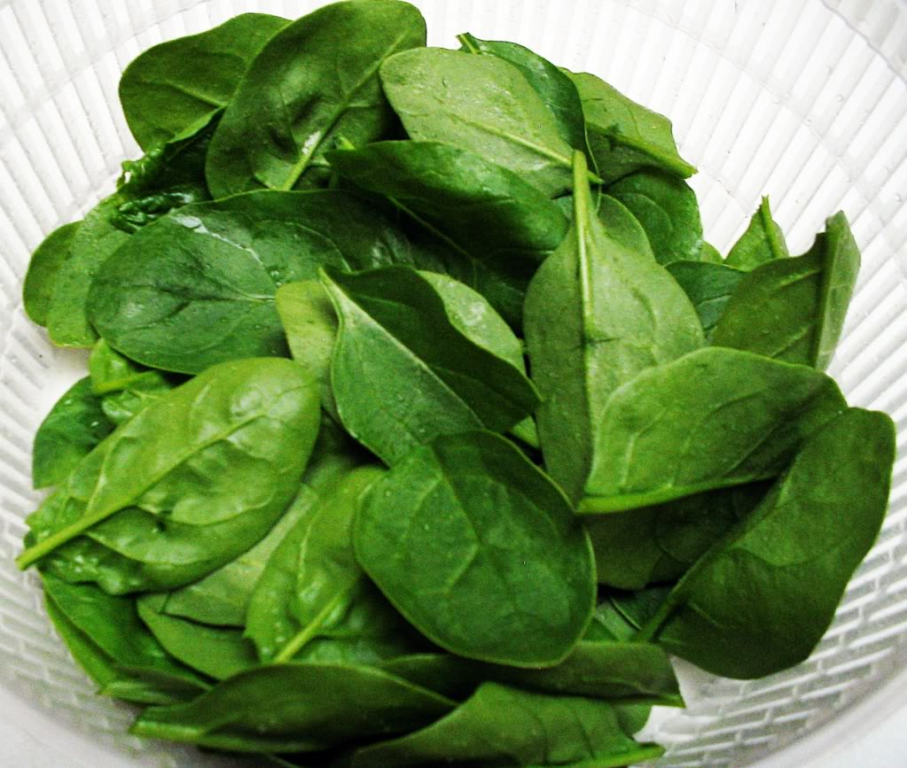 When to Start Clipping Spinach? 001-4