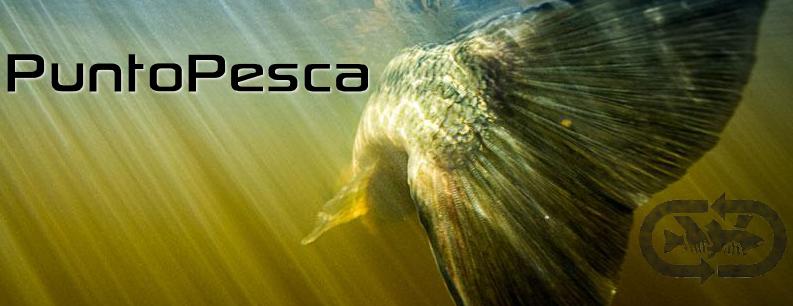 Punto Pesca