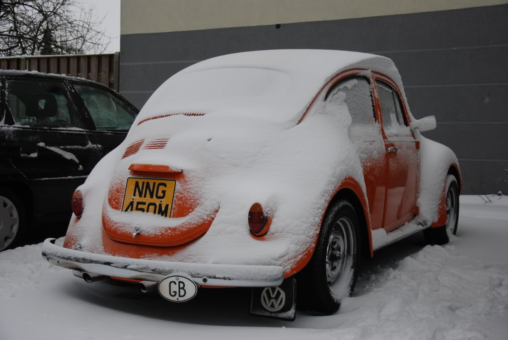 Old cars in the snow  pictures... Mollysnow1