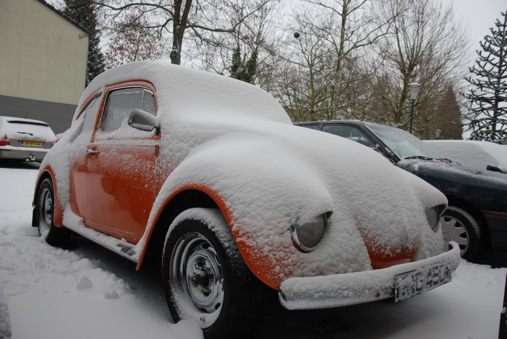 Old cars in the snow  pictures... Mollysnow4