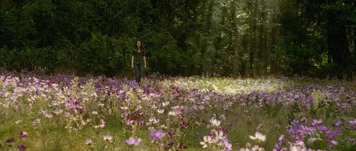 انفراد تام : النسخة الـ 720p Bluray لفيلم الفانتازيا والرعب الرهيب Twilight: New Moon 2009  1