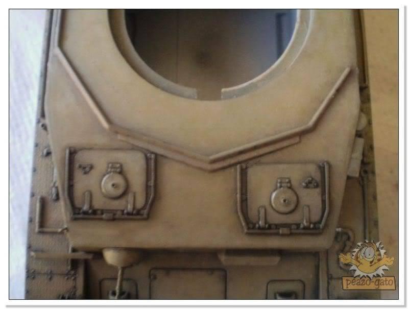 lavados en carros 94PZIVFpeazo-gato