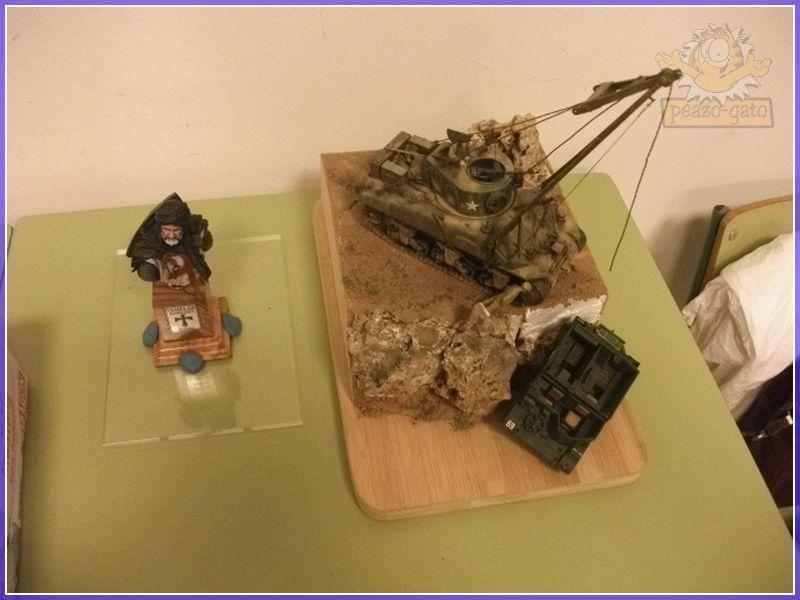 Fotos , 2º curso 2012 (vehiculos militares), AIME 132reunionAIMEpeazo-gato
