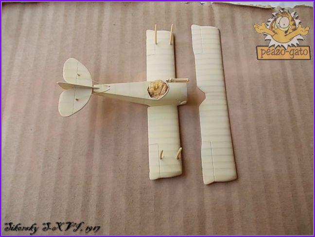 Sikorsky S-XVI , 1916 32SikorskyS-XVIpeazo-Gato