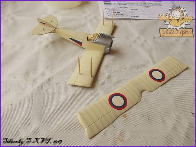 Sikorsky S-XVI , 1916 33SikorskyS-XVIpeazo-Gato