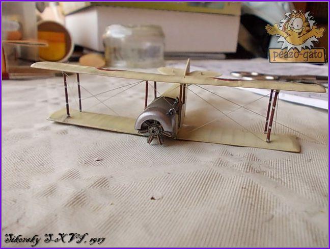Sikorsky S-XVI , 1916 44SikorskyS-XVIpeazo-Gato