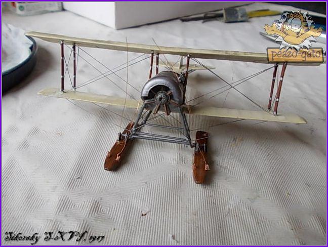 Sikorsky S-XVI , 1916 50SikorskyS-XVIpeazo-Gato