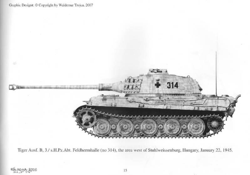 "King Tiger ""Anneliese"", Abt 503º Bg94394"