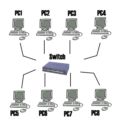 Network Development 1