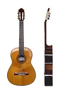 Nhạc cụ dân tộc Guitar