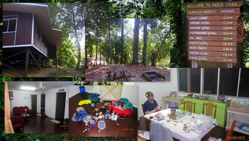 Mulu & Lambir Salticid Collecting Expedition  Blogpic12