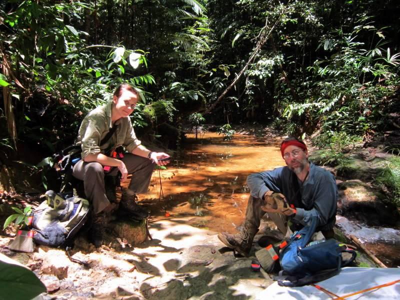 Mulu & Lambir Salticid Collecting Expedition  EdyWayne2