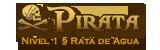 Nivel 1 § Pirata